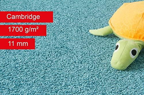 Steffensmeier Teppichboden Cambridge Meterware   Auslegware für Kinderzimmer Wohnzimmer Schlafzimmer   Türkis, Größe: 200x600 cm