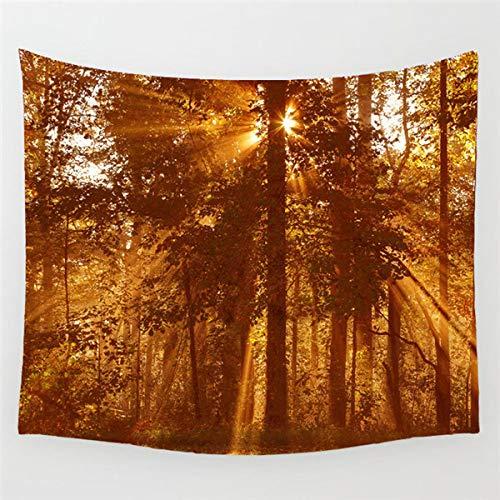 jtxqe Idyllischer Wald Sonnenaufgang Series Print Tapisserie Hintergrund (14) 75x87cm -