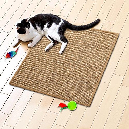 katzeninfo24.de Floori® Sisal Kratzteppich | Naturfaser: nachhaltig und umweltfreundlich | Kratzmatte für die Krallenpflege Ihrer Katze | Cork, 50x50cm