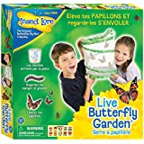 Insect Lore - 8010FR - Elevage papillons - Vert