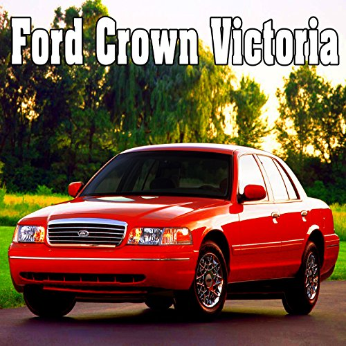 Ford Crown Victoria, Internal Perspective: Door Closes