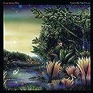Tango In The Night [Vinyl LP]