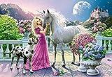 Riou DIY 5D Diamant Painting Voll,Stickerei Malerei Crystal Strass Stickerei Bilder Kunst Handwerk für Home Wand Decor Gemälde Kreuzstich Schönheit und Pferd Bild Muster (Mehrfarbig, 40 * 30cm)