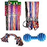 Best Cat Toys Set - High Quality One Nylon Leash and Collar Set Review