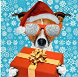 Funny Humorvolle offen Weihnachten Karte