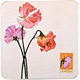 Creative Tops Sweet Pea Corkback Traditional Coasters, Set of 6