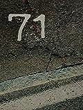 71 ODER DER FLUCH DER PRIMZAHL