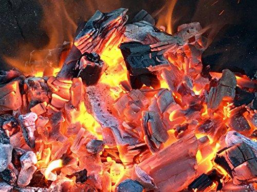 20kg (2x10kg) BBQKontor Premium Buchenholzkohle – 100% Naturbuche – Grillkohle Holzkohle Buche Buchengrillholzkohle in Steakhausqualität + 20 St. Anzünder
