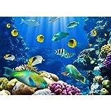 Vlies Fototapete PREMIUM PLUS Wand Foto Tapete Wand Bild Vliestapete - UNDERWATER WORLD - Aquarium Unterwasser Korallen Meer Fische Riff Korallenrif - no. 033, Größe:200x140cm Vlies