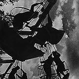 The Stooges Alternatif et Musique Indé