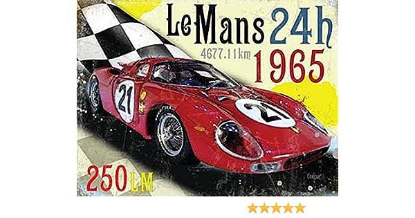 Wild boy Le Mans 24h Art Mural en m/étal Plaque davertissement Affiche du mus/ée Restaurant mari/é Restaurant de No/ël Portraits de Bar Meubles de Bar
