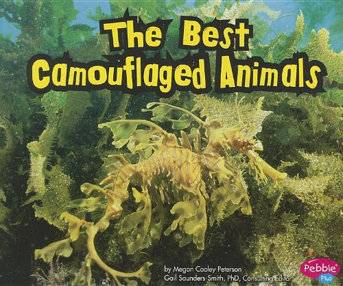 The Best Camouflaged Animals Paperback