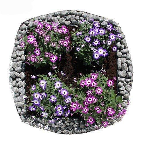 bellissa Gabionen-Hochbeet BASIC 4-Eck – 95594 – Steinkorb-Pflanzkübel quadratisch – Bausatz inkl. Trennfolie – 113 x 113 x 40 cm
