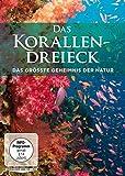 DVD Cover 'Das Korallendreieck - Das größte Geheimnis der Natur