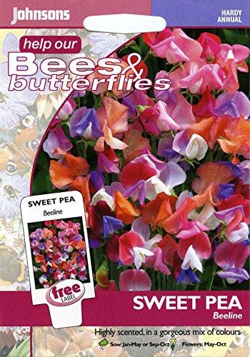 johnsons-seeds-pictorial-pack-flower-sweet-pea-beeline-25-seeds