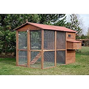 Poulailler 10 poules LARGE SQUARE - Animaloo