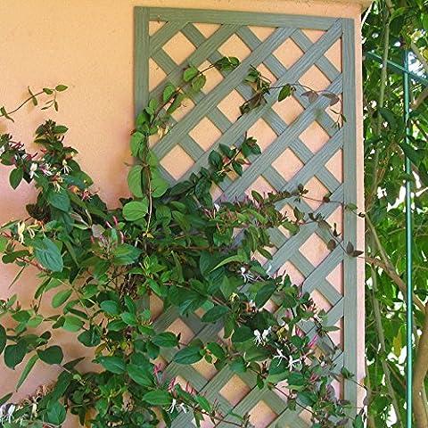 Set de 2 treillis en BOIS COMPOSITE 1x0,50 m. Couleur vert nature. Marque: B Cottage