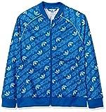 adidas Jungen Trefoil Monogram SST Jacke, Bluebird/White, 164