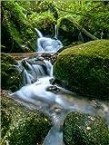 Poster 90 x 120 cm: Kleiner Wasserfall im Schwarzwald von