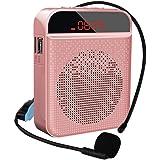 Amplificador de voz portátil con sistema Pa personal con auriculares de micrófono, altavoz de micrófono, compatible con TF/US