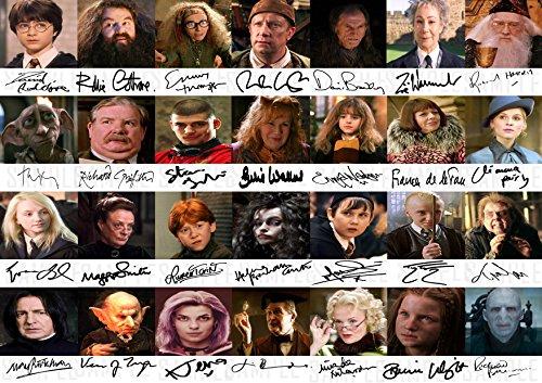 The Signature Shop Póster Harry Potter DE 28 Miembros fundidos – Da