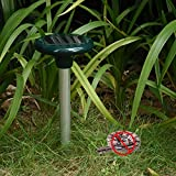 Best Snake Repellents - Solar Powered Ultrasonic Snake Repeller Aluminium Tube Deterrent Review