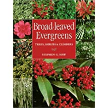 Broad-Leaved Evergreens: Trees, Shrubs and Climbers