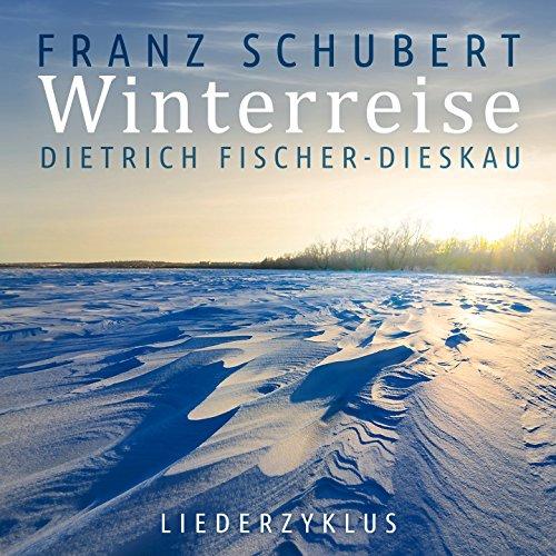 (Winterreise, Op. 89: No. 18, Der stürmische Morgen.