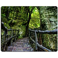 Mousepads Amazing scene at Mekong Delta Rocky mountain Old scala in pietra con Rock Fence albero con grande albero Image ID 30420856 by Liili Customized Mousepads Stain Resistance Collector kit Kitchen Table top Desk drink Customized Stain Resistance Collector kit Kitchen Table top Desk