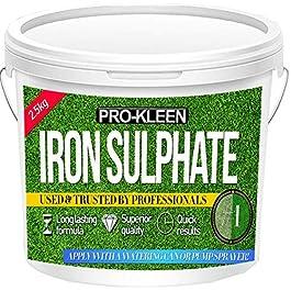 Sulfate de fer en poudre – Sec – De première qualité – 2,5kg – Antimousse et fortifiant pour pelouse Poudre sèche facilement soluble dans l'eau