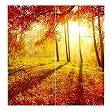 Homyl 2er-Set Vorhang Schal Verdunkelungsvorhang BLICKDICHT für Wohnzimmer Schlafzimmer, Auswahl - Sonnenuntergang Ahornblätter