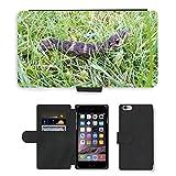 Just carcasa caliente estilo ranura de tarjeta de teléfono celular Funda de piel sintética//m00140200Caterpillar Polilla de vino, diseño de búhos insectos//Apple iPhone 6Plus 5.5'