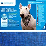 Aqua Coolkeeper raffreddamento Pet bandana Pacific blu