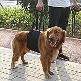 GLOGLOW 4 Größen Schwarz Dog Lift und Assist Support, Rehabilitation Harness mit Griff für Canines Aid Sling Lift für Kleine Hunde(XL)