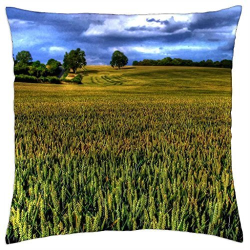sizing-up-the-landscape-throw-pillow-cover-case-18-x-18