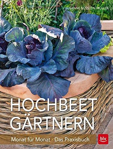 Preisvergleich Produktbild Hochbeet-Gärtnern Monat für Monat: Das Praxisbuch