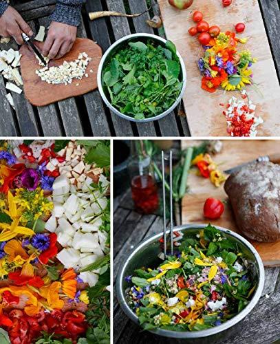 Kräuterkauz: Die faszinierende Welt der essbaren Wildpflanzen - 7