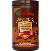 Wellspring Health And Immunity Booster Armour Health Supplement Sugar Free(300 g Pack)