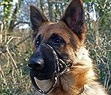 DOGMATIC Hundehalfter, gepolstert, aus Netzstoff, Größe 4, Schwarz