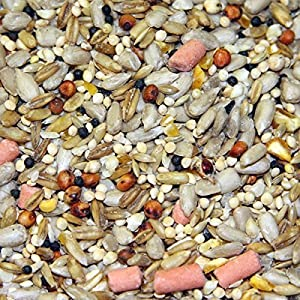 20kg Super Premium No Mess/No-Grow Wild Bird Food/Seed