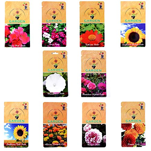 Gate Garden Gate Garden Flower Seed Summer Sowing