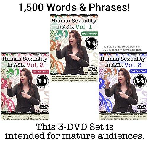 SL, Vol. 1-3 (3 DVD Set) ()