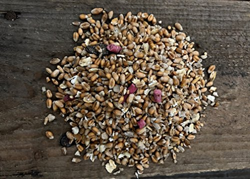20kg Wild Bird Food All Season Winter/Summer Seed Feed Mixture