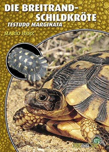Die Breitrandschildkröte: Testudo Marginata (Art für Art)