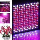 ICOCO LED Pflanzenlampe 14W 225 LEDs Hydro Plant voll spektrum Lampe für Pflanze Blumen Gemüse (14)