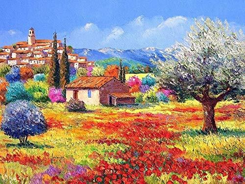 Gerahmte DIY Malen Nach Zahlen Malen Nach Zahlen Wanddekor Bild Ölgemälde Auf Leinwand Für Wohnkultur Garten Frameless 16X20 Zoll -