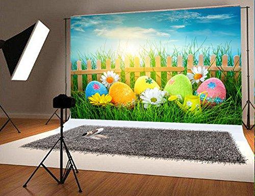 Kate Microfaser Ostern Hintergrund Blauer Himmel Wolke Holz Zaun Kulissen für Fotografie Gras Frühling Hintergrund Nahtlose Fotoautomat Stütze 7x5ft (220x150cm)