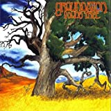 Songtexte von Groundation - Young Tree