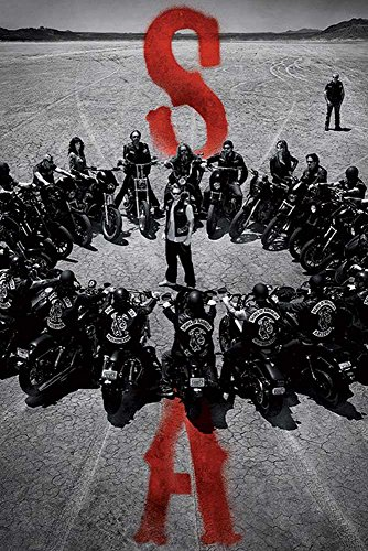 Empire Interactive - Poster Sons of Anarchy Circle multicolore