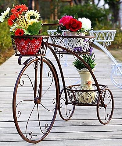 LB Pot à fleurs en fer à repasser Fer à vélos Crochet à fleurs Pot à fleurs en fer européen étagère Salon Balcon étagères à fleurs Étagère de pot de montage ( couleur : Brass , taille : 83*55.3*23cm )